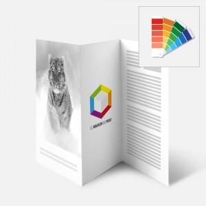 Papier de couleur